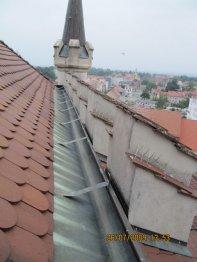 Taubenabwehrspikes auf Dach
